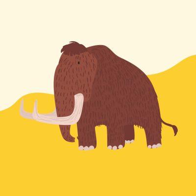 Grafik Mammut